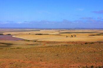 Landscape Bredasdorp, Overberg, Whale Coast, Western Cape